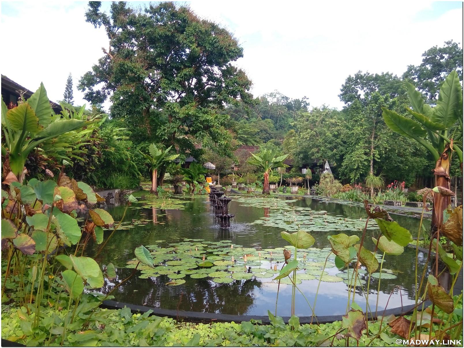 Тиртаганга Водный дворец Бали фото